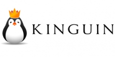 Kinguin Discount Code 5%