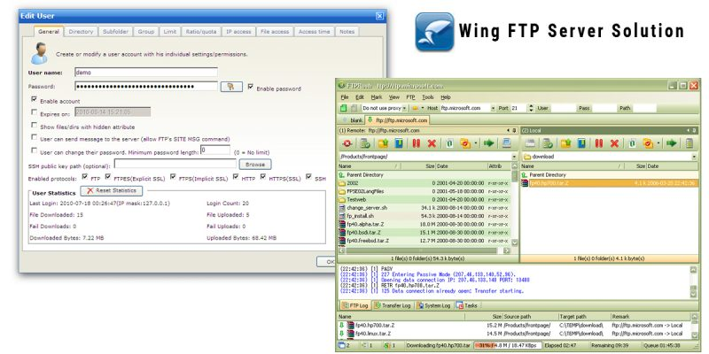 Wing FTP Server Software Deals